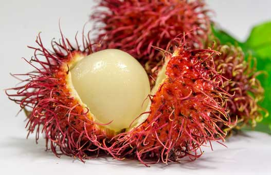 manfaat buah rambutan untuk kesehatan