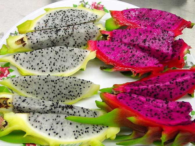 Manfaat buah naga untuk kecantikan