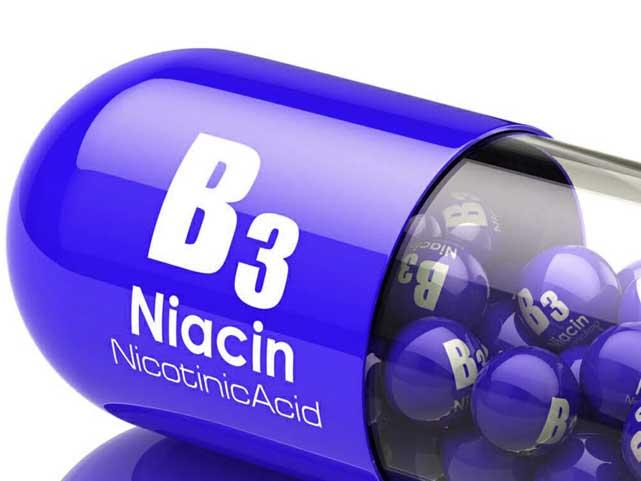 manfaat niacin
