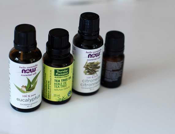 manfaat minyak pohon teh