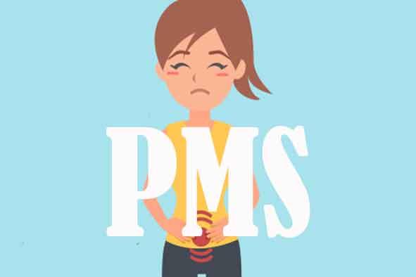 Apa itu pms