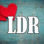apa itu LDR