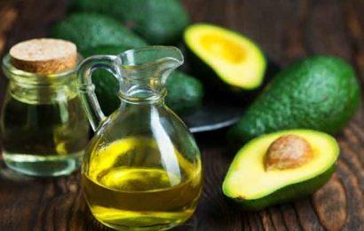 Manfaat minyak alpukat untuk kecantikan