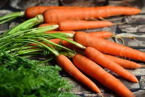Efek samping masker wortel