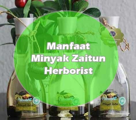 Manfaat minyak zaitun herborist