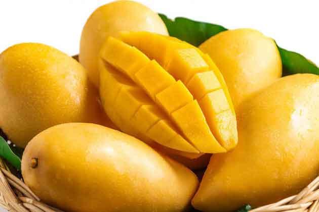 efek samping buah mangga