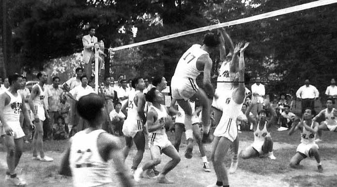 Sejarah bola voli di indonesia