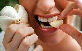 manfaat makan bawang putih