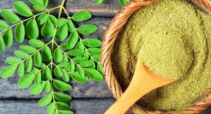 manfaat daun kelor untuk wajah