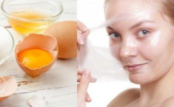 manfaat putih telur untuk wajah
