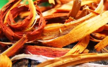 manfaat kayu secang untuk kulit wajah
