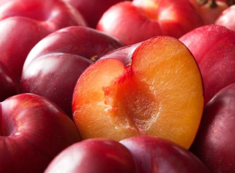 manfaat buah plum merah untuk diet