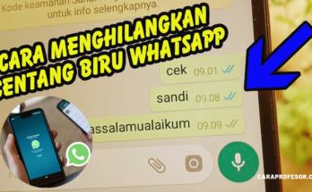 Cara Menghilangkan Centang Dua di Whatsapp