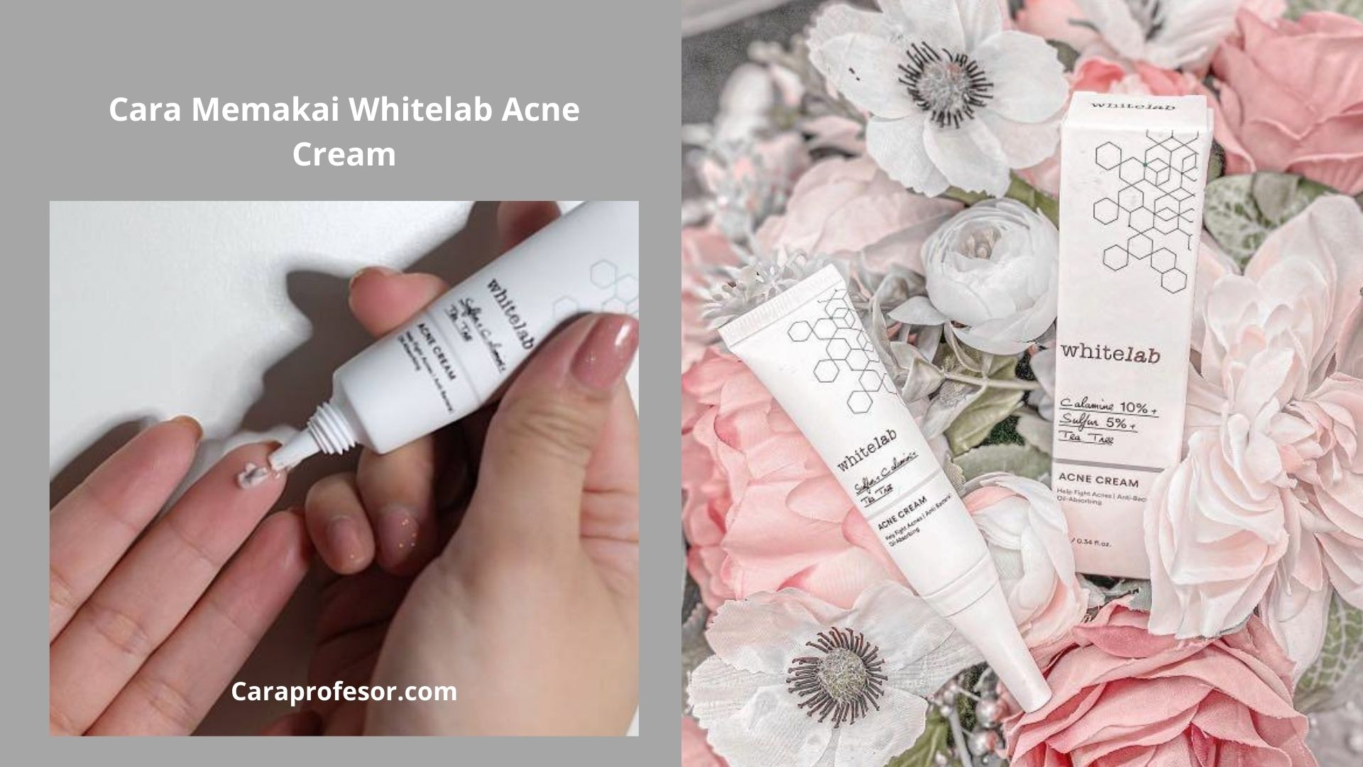 Cara Memakai Whitelab Acne Cream