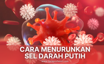 cara menurunkan sel darah putih