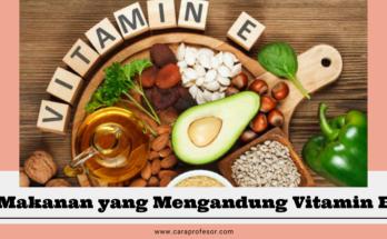 makanan yang mengandung vitamin e